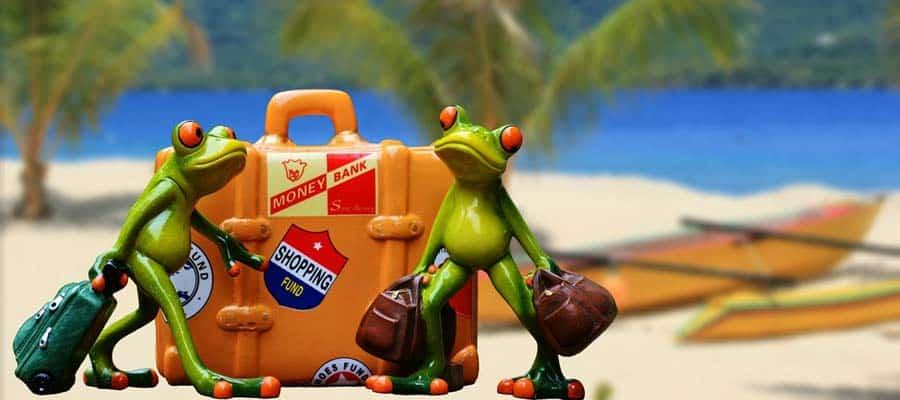 Packliste-Header