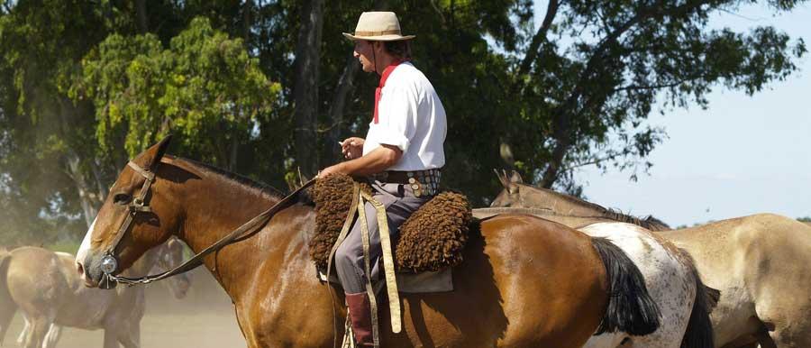 Ein argentinischer Gaucho im wilden Patagonien