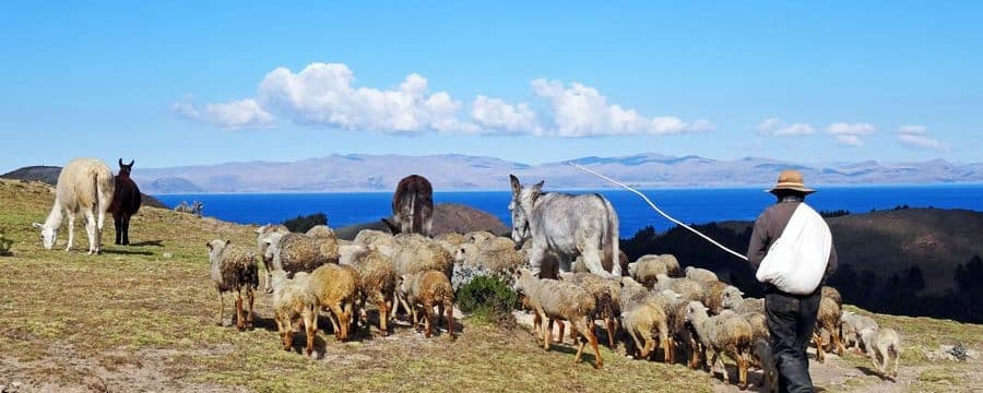 Bolivien ist noch ein sehr wildes und urspruengliches Land