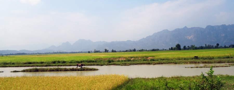 Traumhafte Natur und Landschaft in Laos