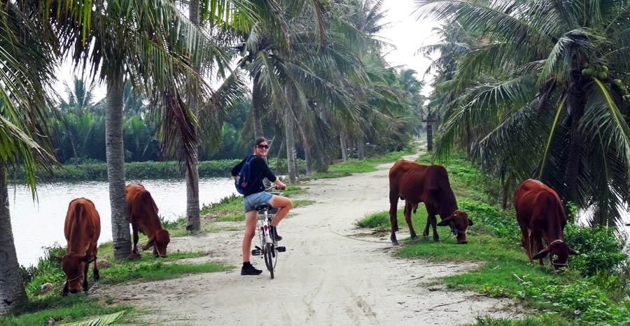 Vietnam Online Reiseführer: Fahrradtour