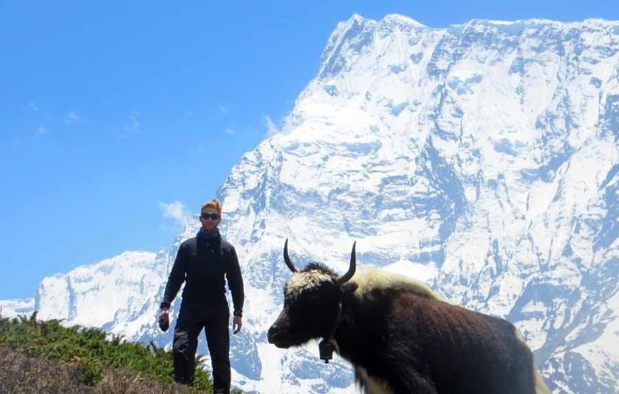 Essen Nepal: Yak Fleisch & Käse