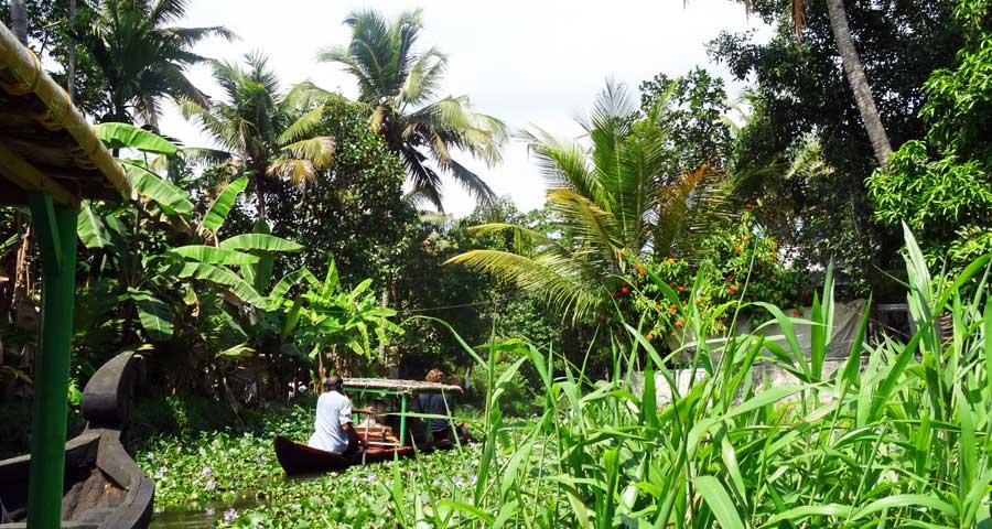 Kerala Backwaters: Durch die kleinen Kanäle