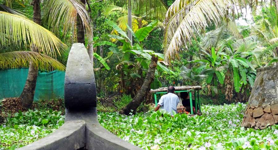 Kerala Backwaters: Mit dem Kanu durch die Kanäle