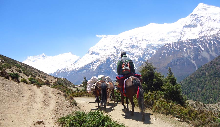 Nepal Backpacking: Himalaya Trekking Backpacker