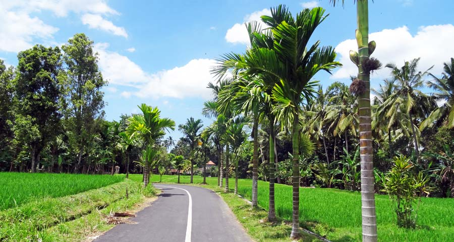 Mount Batur Bali Wetter