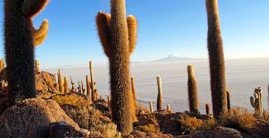 Uyuni Salzwüste: Salzpfanne Salzhügel