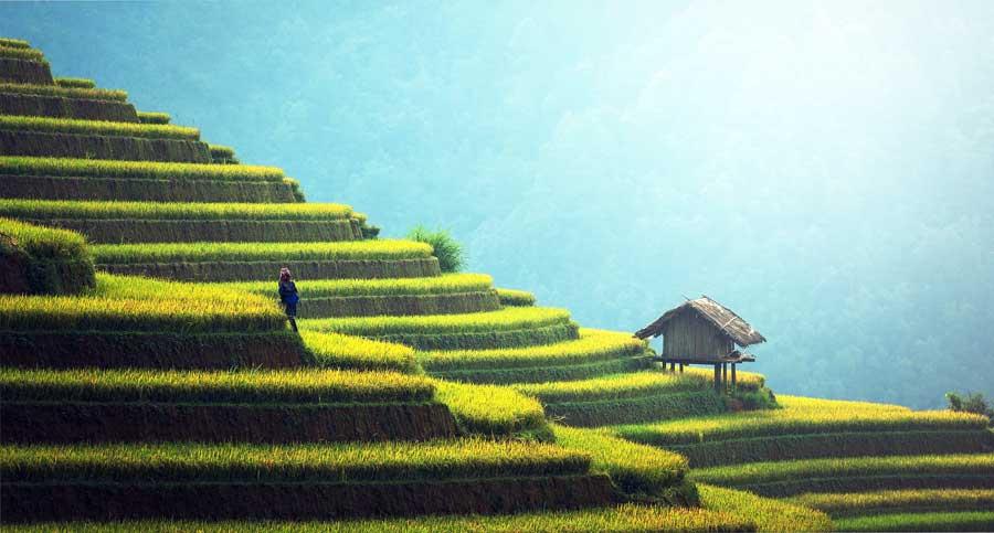Beste Reisezeit Vietnam: Klima und Temperaturen