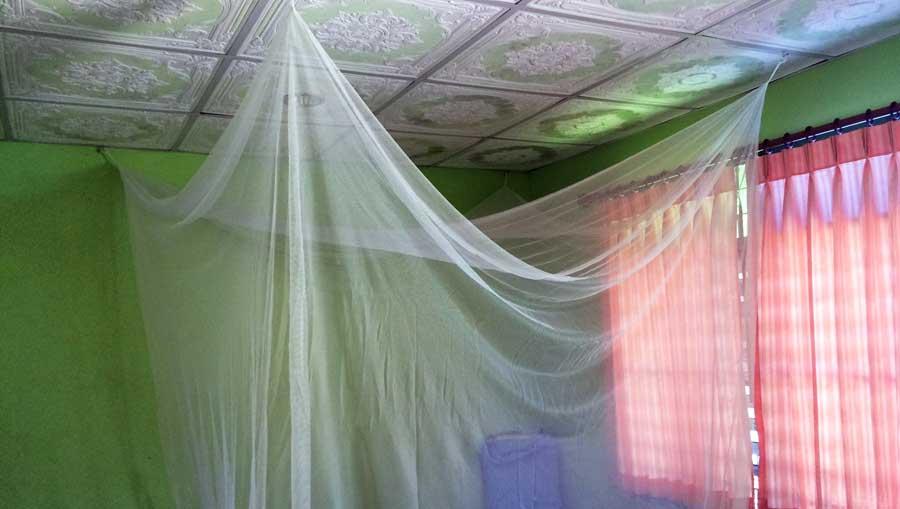 Moskitonetz Reise: Mückennetz, Fliegengitter, Insektenschutz und Fliegennetz