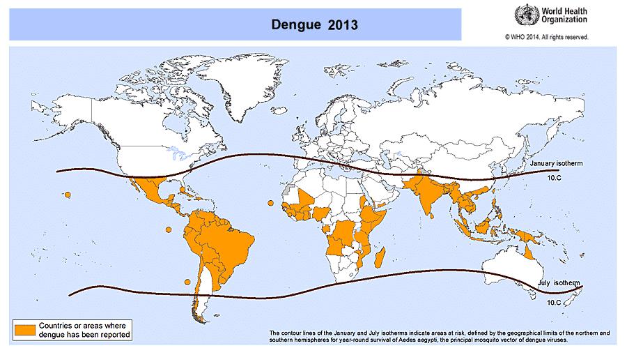 Moskitonetz Reise: Dengue - Quadratzoll Mesh, Mückennetz, Insektenschutz und Fliegengitter