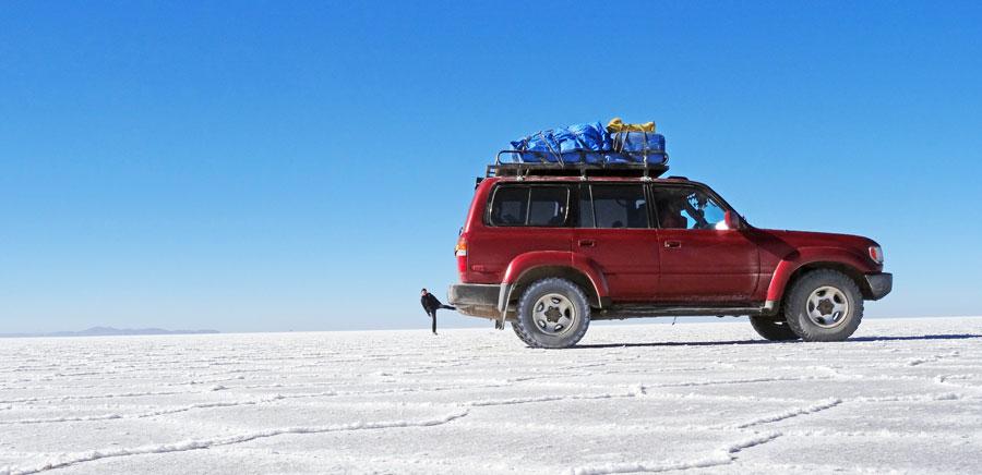 Salar: Jeeps, Salz, Lamas und Vicuñas in der Salzwüste Südamerika
