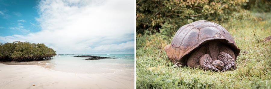Galapagosinseln: Darwin Nationalpark