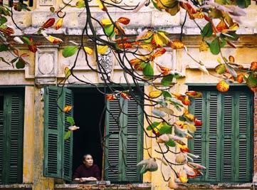 Hanoi: Altstadt - Viertel der 36 Gassen