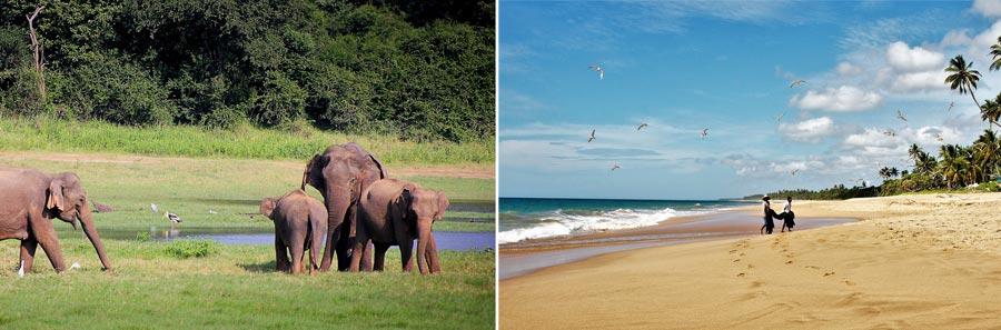 Visum Sri Lanka: ETA Einreise, Touristenvisum