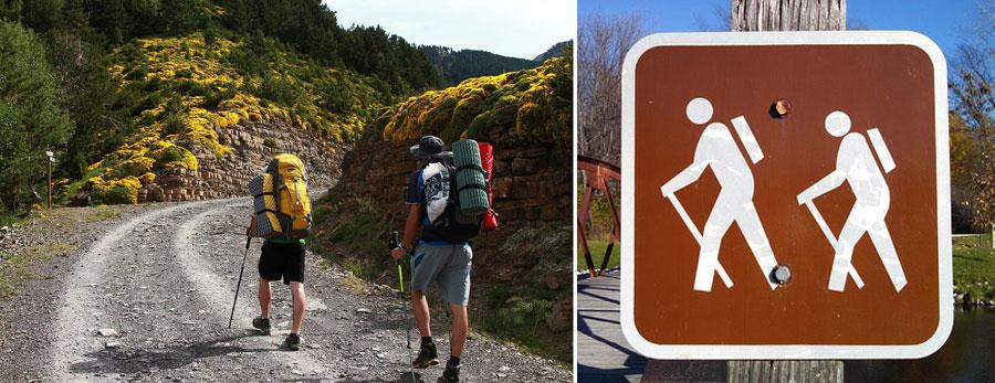 Reiserucksack: Wanderrucksack Trekking