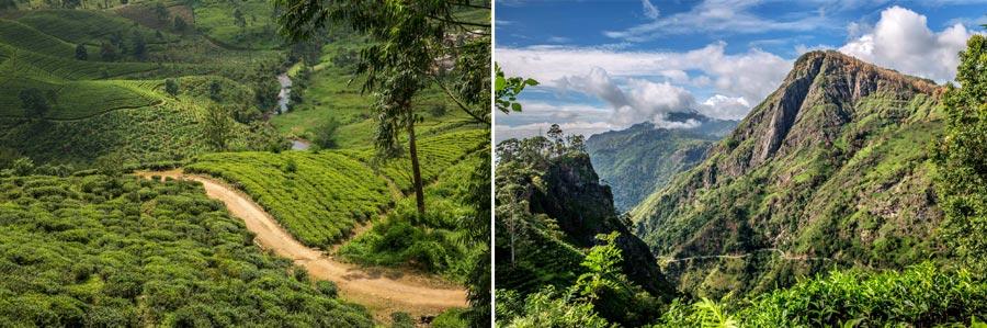 Sri Lanka Sehenswürdigkeiten: Nuwara Eliya, Ella, Hochland