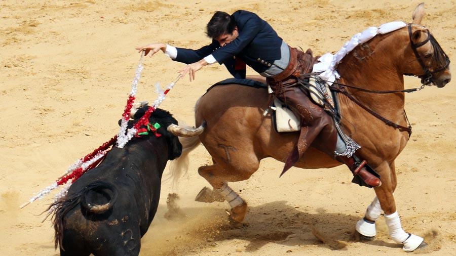 Valencia Sehenswürdigkeiten: Stierkampfarena