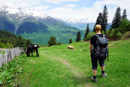 Wandersocken: Ratgeber, Testbericht