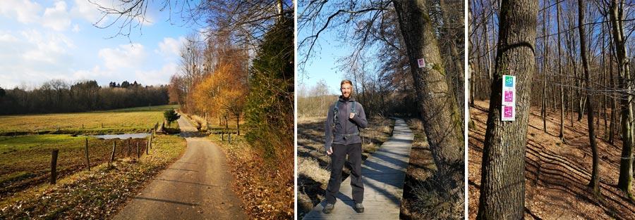 Saarland: Rundwanderwege, Wanderung