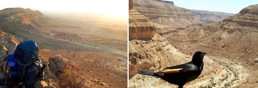 Israel Sehenswürdigkeiten: Canyon, Wüste