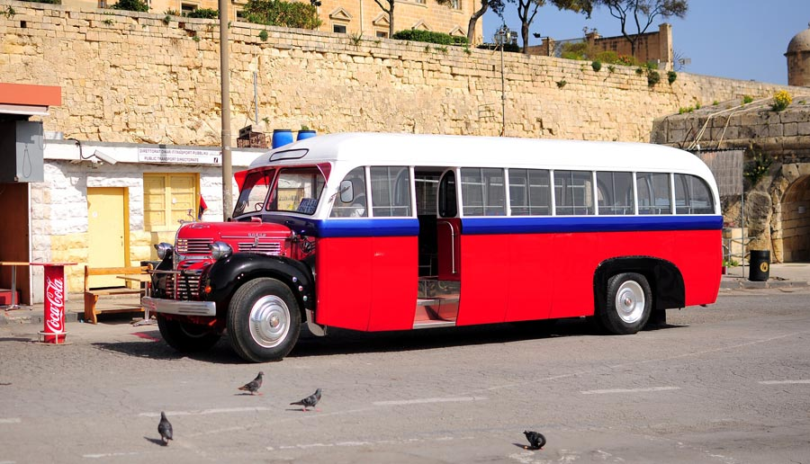 Gozo Transport, Bus