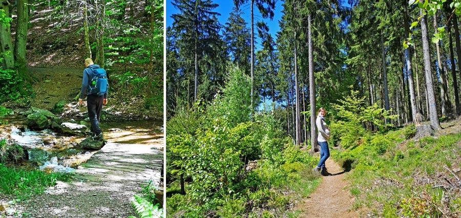 Wanderwege Saarland: Felsenweg, Losheim