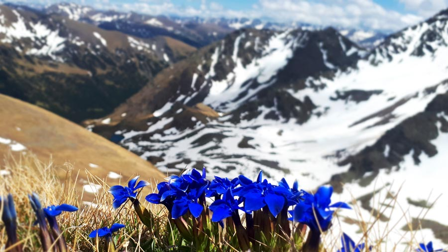 Sorteny wandern, Berge, Wanderung