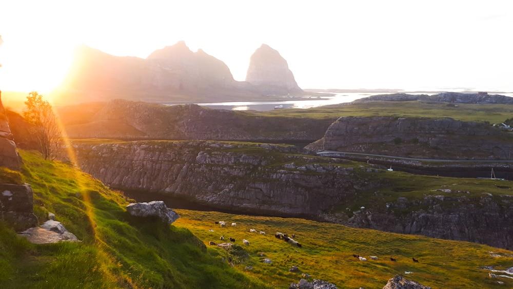 Abendlicht in Helgeland auf der Insel Traena