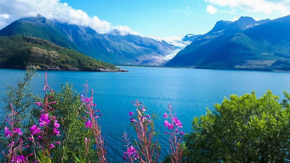 Gletscher Svartisen, Naturhighlight Helgeland