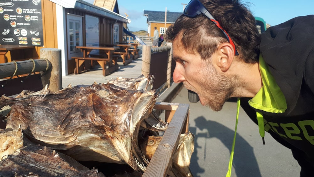 Getrockneter Fisch auf den Lofoten