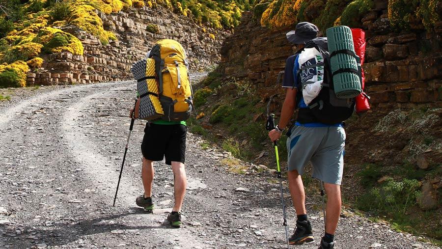 Reisekissen: Leichtes Kopfkissen fürs Camping und Trekking