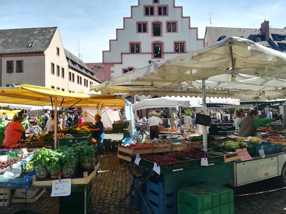 Stände auf dem Freiburger Münstermarkt