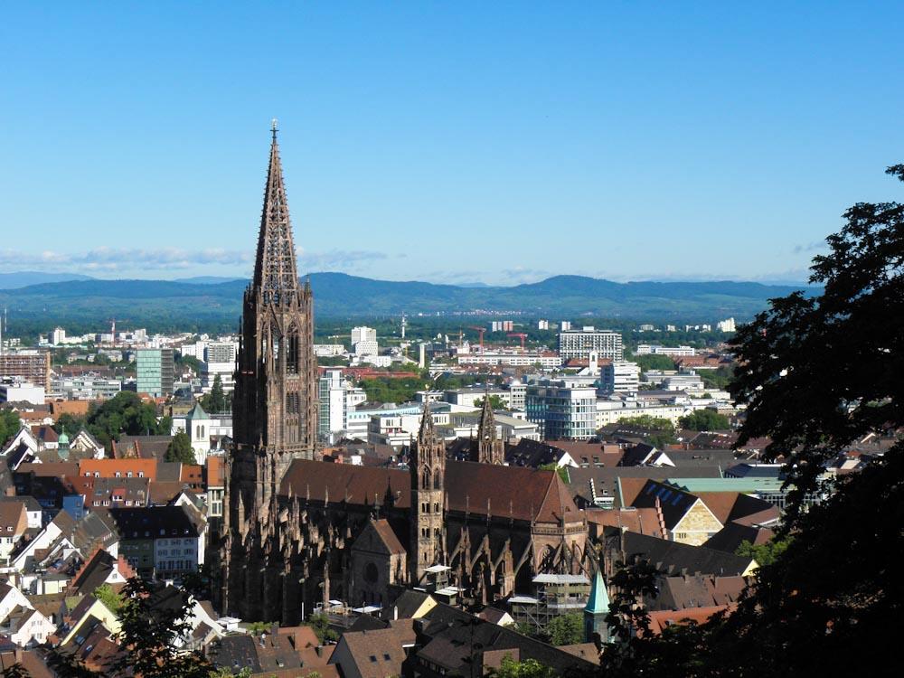 Blick auf Freiburger Münster vom Schlossberg