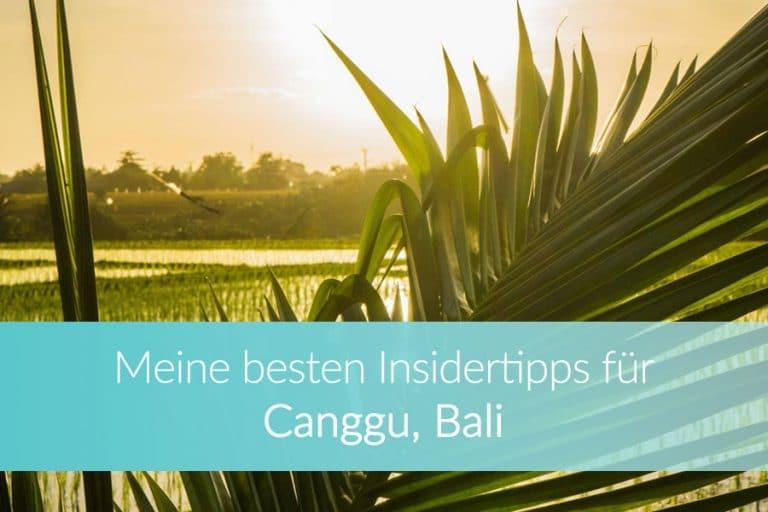 Canggu Bali: Meine besten Insidertipps für Strände und Yoga zwischen Reisfeldern