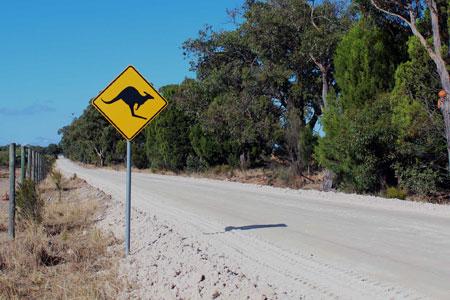 australien-visum-ratgeber