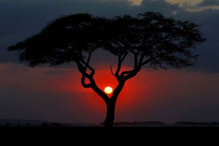 kenia-visum-ratgeber
