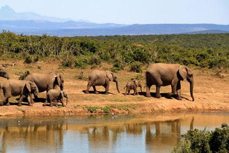 tansania-visum-ratgeber