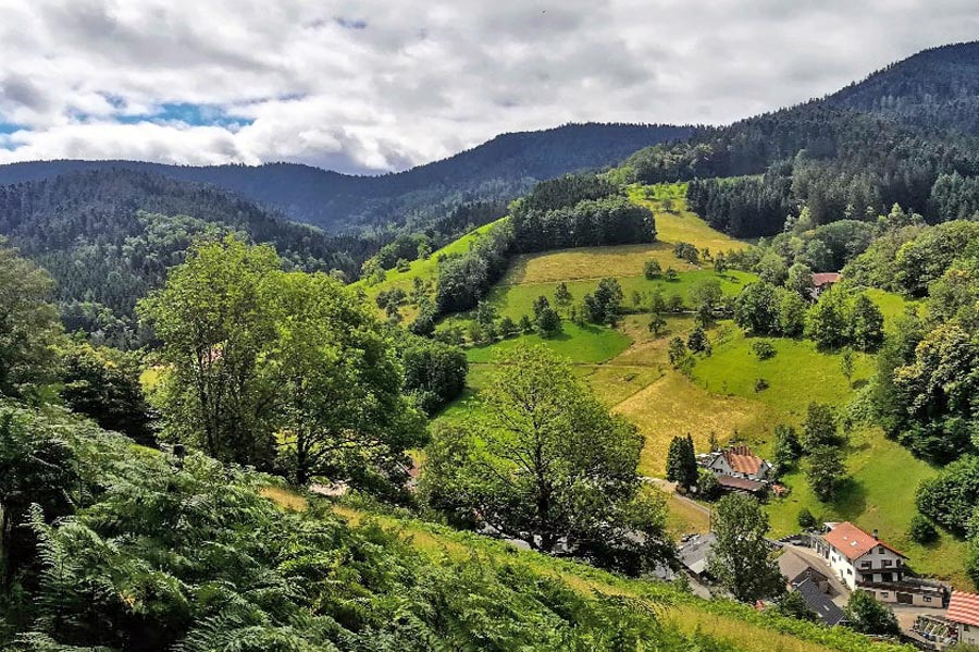 schwarzwald-wandern-aussicht-himmelsteig