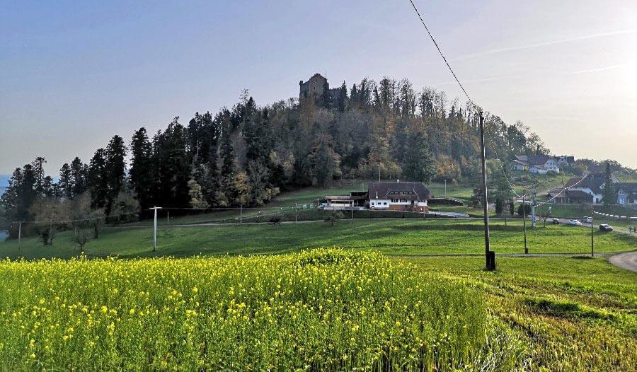 schwarzwald-wandern-hohengeroldseck-burg