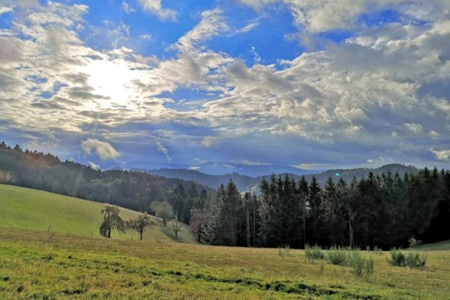 schwarzwald-wandern-top-wanderungen