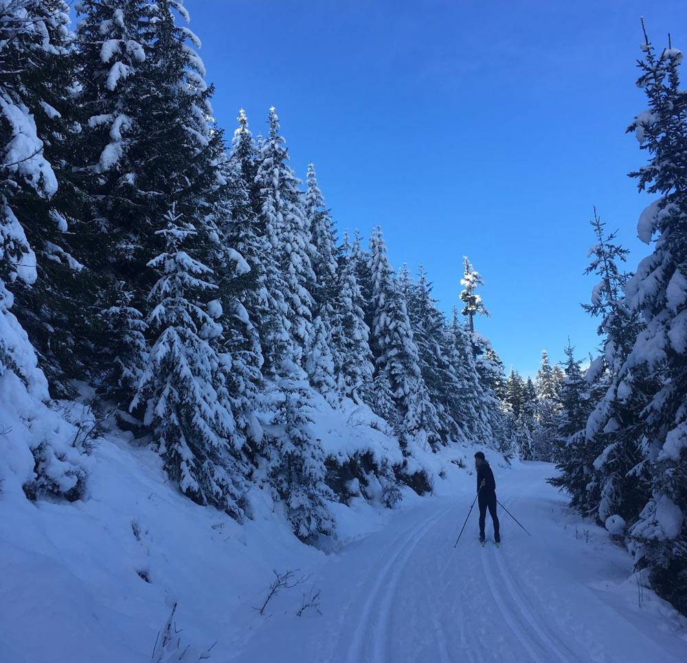 Langläuferin auf Loipe im Schwarzwald