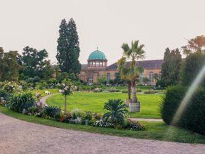 Botanischer Garten mit Pflanzen und Bäumen
