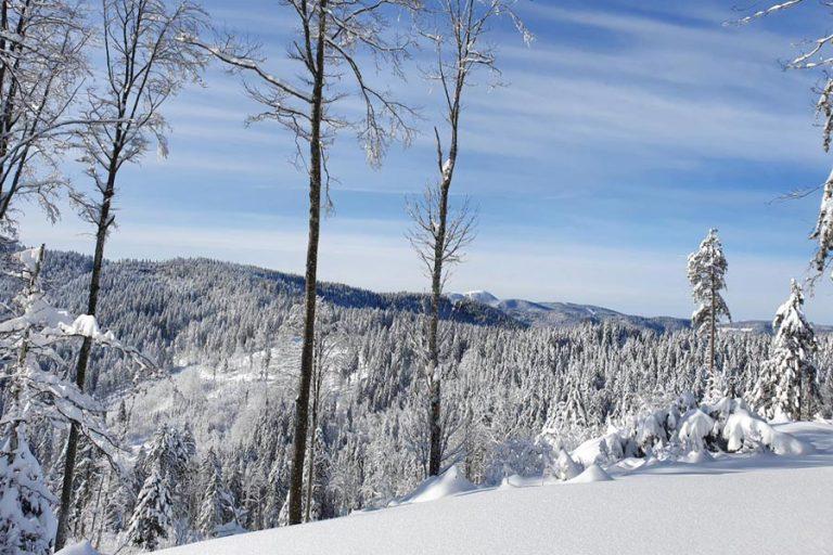 Schwarzwald im Winter: Die schönsten Aktivitäten im Schnee