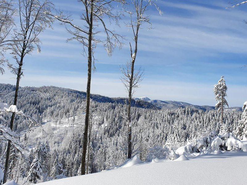 schwarzwald-winter-tour-schnee