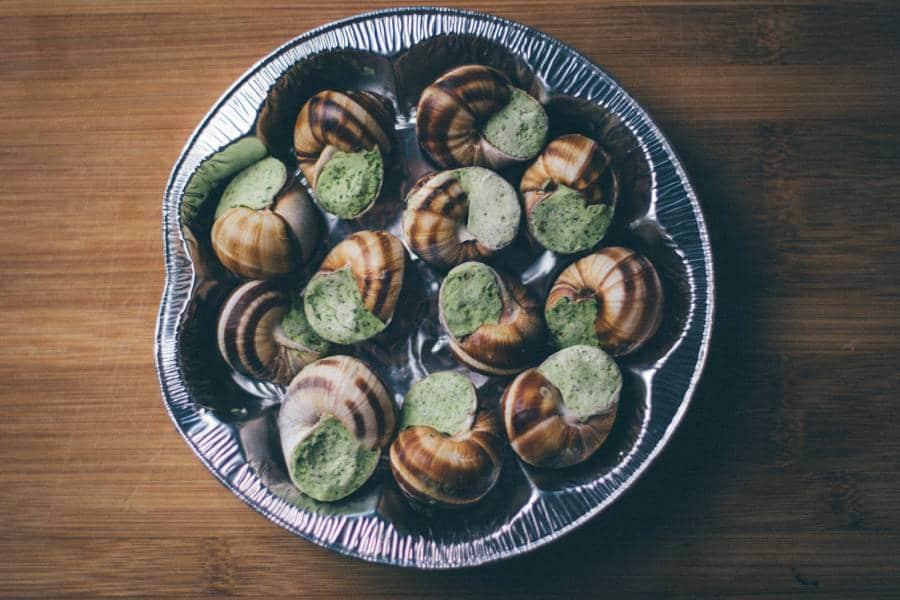 Burgundische Schnecken sind eine Spezialität der französischen Küche: