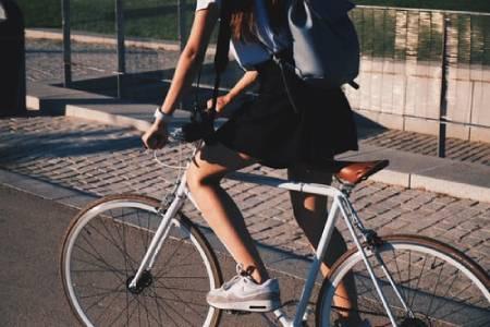 Fahrrad Navi Test Ratgeber