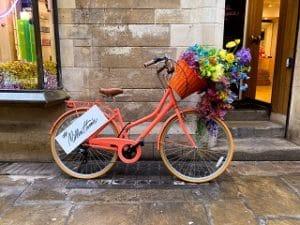 Der schöne Fahrradsattel im Test und Vergleich