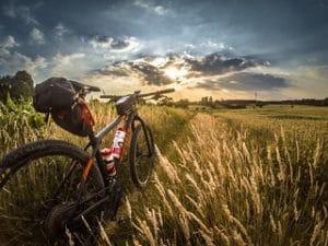 Die besten Mountain Bike Fahrradsättel im Test und Vergleich