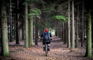 Mountain Gravel Bike im Test