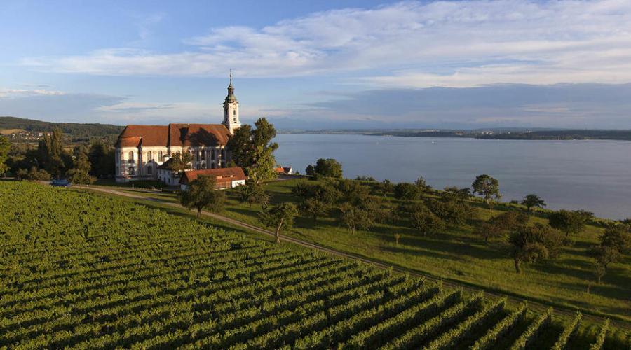 Der beliebte Prälatenweg bei der Fahrradtour am Bodensee